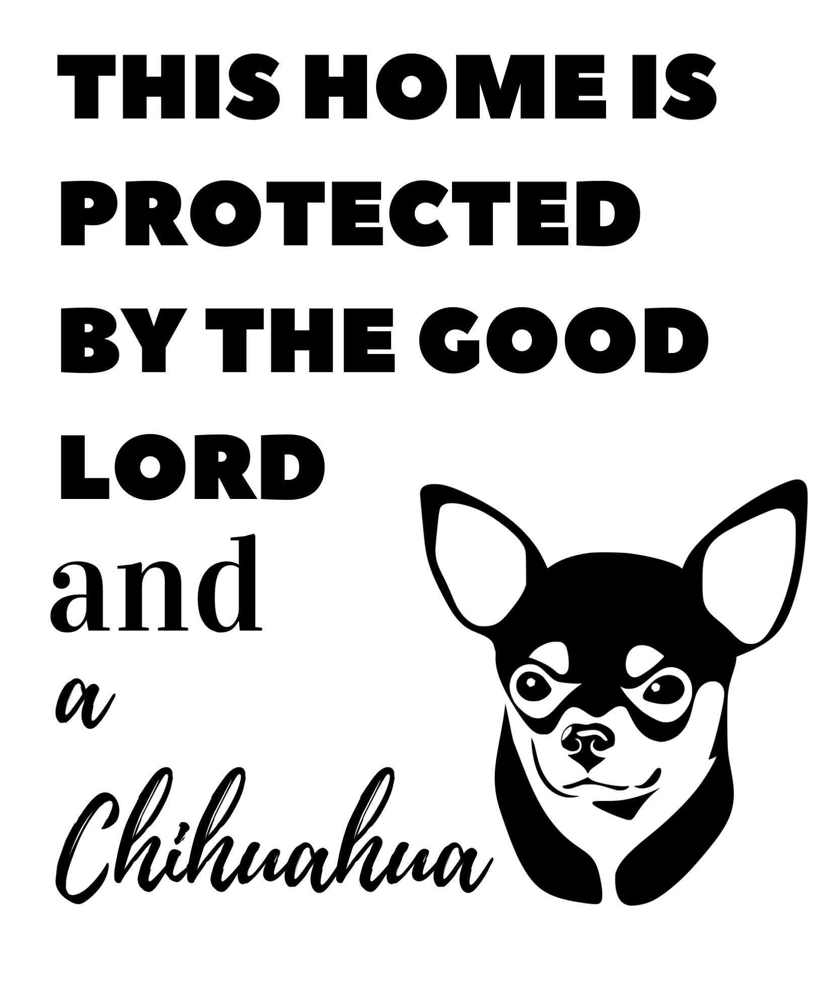 Beware Of The Dog Sign Chihuahua Bald